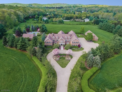Essex County, Morris County, Union County Single Family Home For Sale: 23 Welsh Lane