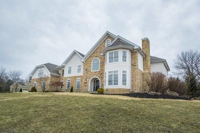 Montville Twp. Single Family Home For Sale: 100 Windsor Dr