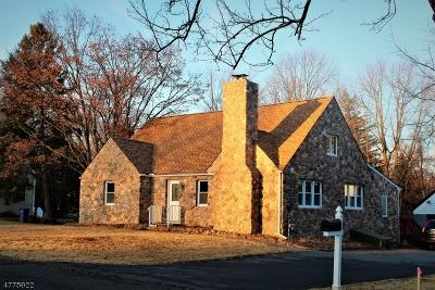 Mendham Boro Single Family Home For Sale: 15 Hillcrest Ave
