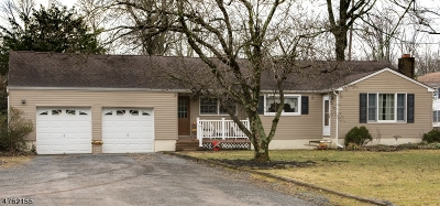 Delaware Twp. Single Family Home For Sale: 654 State Highway 12