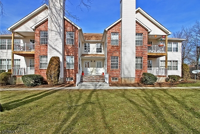 Piscataway Twp. NJ Condo/Townhouse For Sale: $250,000