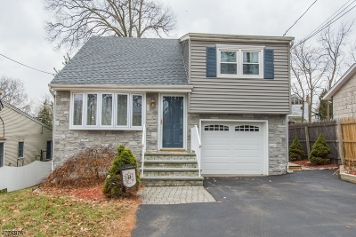 Parsippany Single Family Home For Sale: 37 Chesapeake Ave