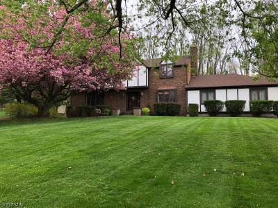 Clinton Twp. Single Family Home For Sale: 8 Colonial Ct
