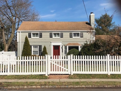 Westfield Town Single Family Home For Sale: 1117 Rahway Ave