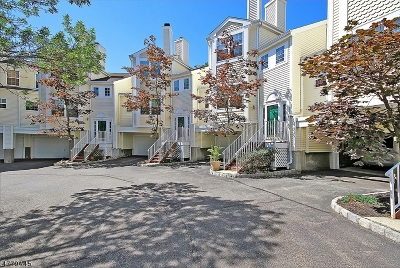 Hanover Condo/Townhouse For Sale: 404 Brookview Ct