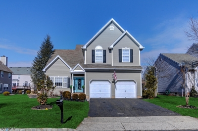 Bridgewater Twp. Single Family Home For Sale: 7 Reinhart Way
