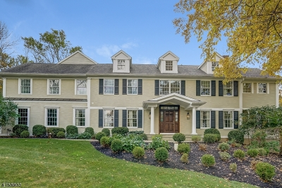 Bernards Twp., Bernardsville Boro Single Family Home For Sale: 28 Fawn Ln