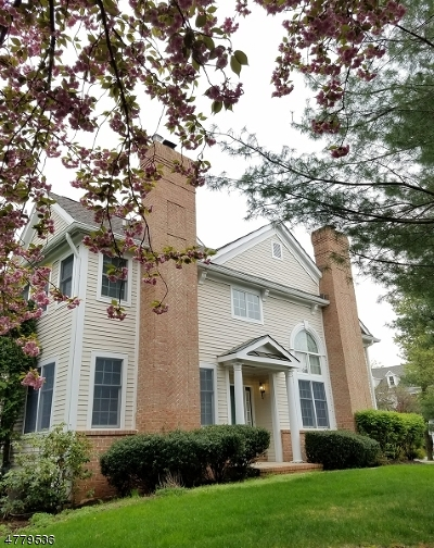 Far Hills Boro Single Family Home For Sale: 7 Cowdray Pkwy