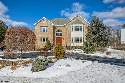 Montville Twp. Single Family Home For Sale: 10 Jarombek Dr