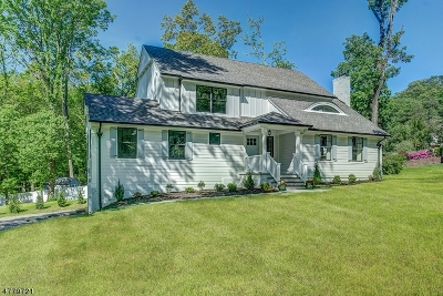 Berkeley Heights Single Family Home For Sale: 6 Pine Grove Rd