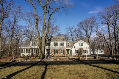 Bernards Twp., Bernardsville Boro Single Family Home For Sale: 91 Deer Ridge Rd