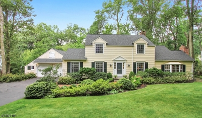 Berkeley Heights Single Family Home For Sale: 36 Winchip Rd