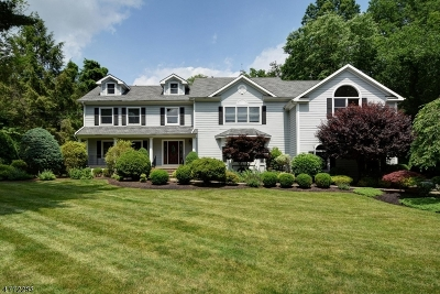 Scotch Plains Twp. Single Family Home For Sale: 10 Blackbirch Rd