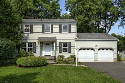Bernards Twp., Bernardsville Boro Single Family Home For Sale: 33 Dayton Cres