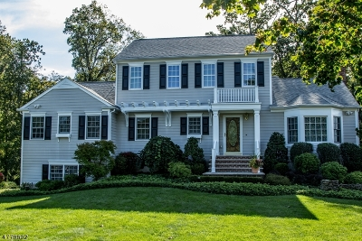 Morris Twp. Single Family Home Active Under Contract: 22 Johnston Dr