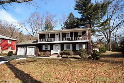 Parsippany Single Family Home For Sale: 3 Inwood Rd