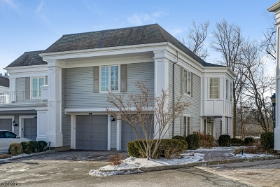 Chatham Twp. Condo/Townhouse For Sale: 217 Terrace Dr