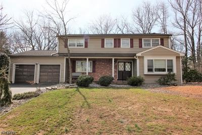 East Brunswick Twp. Single Family Home For Sale: 7 Boston Post Rd