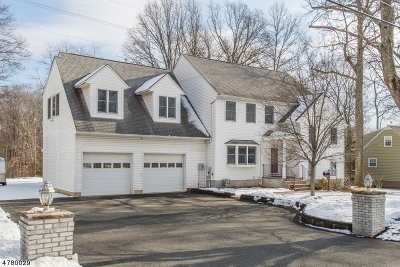 East Hanover Twp. Single Family Home For Sale: 84 Overlook Ave
