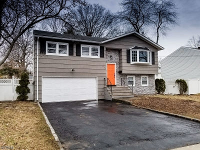Single Family Home For Sale: 413 Dietz St