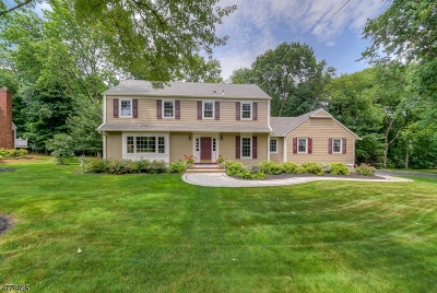 Bernards Twp., Bernardsville Boro Single Family Home For Sale: 10 Walnut Cir
