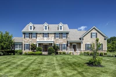 Readington Twp. Single Family Home For Sale: 135 Kosciuszko Rd