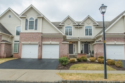 Somerset County, Morris County Condo/Townhouse For Sale: 802 Chelsea Dr