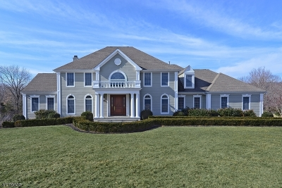 Readington Twp. Single Family Home For Sale: 26 Clearview Rd