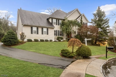 West Orange Twp. Single Family Home For Sale: 10 Faas Ct