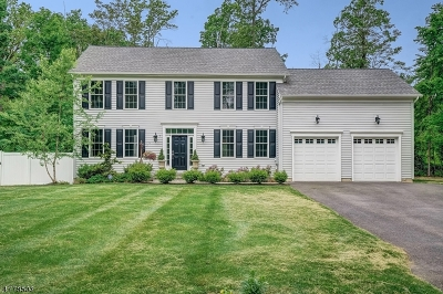 Bernards Twp., Bernardsville Boro Single Family Home For Sale: 7 Rocky Ln