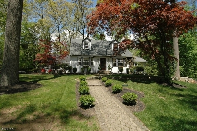 Mountain Lakes Boro NJ Single Family Home For Sale: $729,900