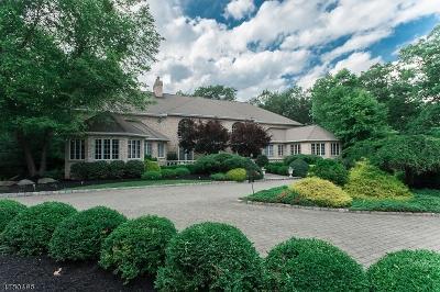 Tewksbury Twp. Single Family Home For Sale: 21 Laurel Mountain Way