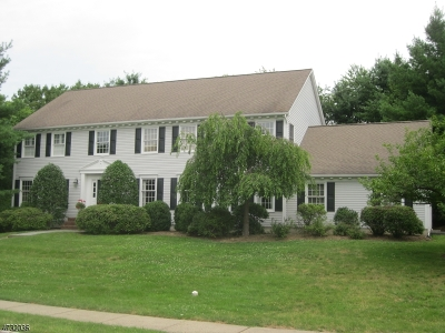 Mendham Boro, Mendham Twp. Single Family Home For Sale: 8 Devonshire Ln