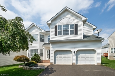 Somerset County Single Family Home For Sale: 26 Terrace Ln