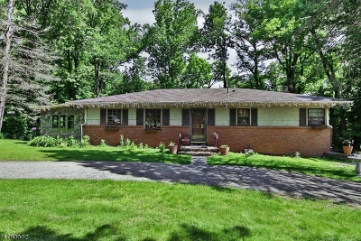 Morris County Single Family Home For Sale: 24 Kakeout Rd
