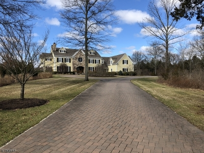 Bedminster Twp. NJ Single Family Home For Sale: $2,395,000