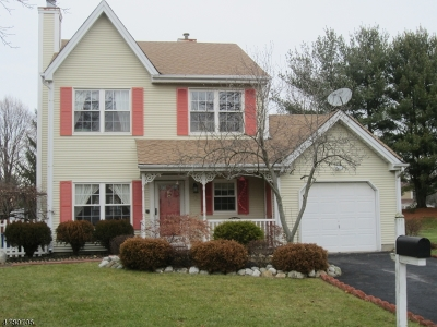 Single Family Home For Sale: 64 Rice Run