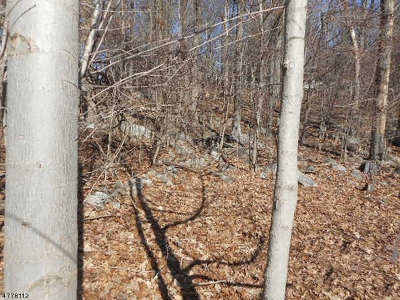 Residential Lots & Land For Sale: 37 Cohocton Rd