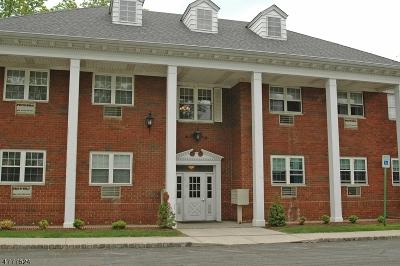 Scotch Plains Twp. Condo/Townhouse For Sale: 530 Park Ave, Unit 210