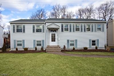 Livingston Single Family Home For Sale: 29 Brandon Ave