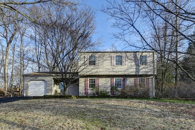 Bridgewater Twp. Single Family Home For Sale: 1256 Dogwood Dr