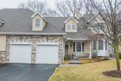 Parsippany-Troy Hills Twp. Single Family Home For Sale: 95 Schindler Ct