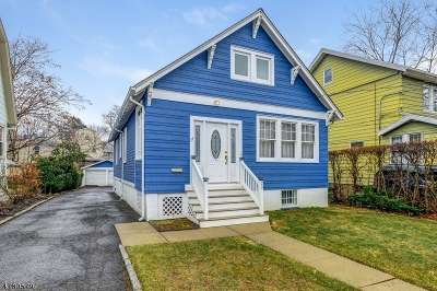Maplewood Twp. Single Family Home For Sale: 20 Meadowbrook Pl