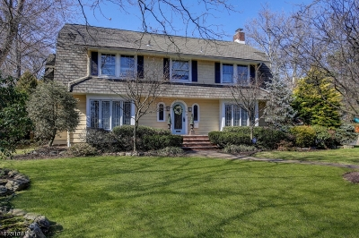 WestField Single Family Home For Sale: 125 E Dudley Ave