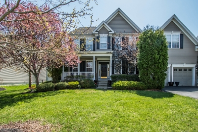 Clinton Twp. Single Family Home For Sale: 60 Crestview Dr