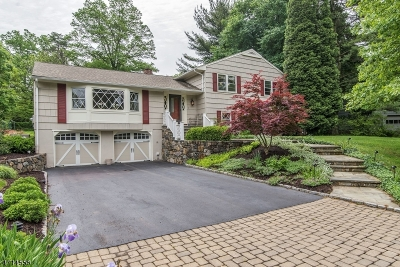 Bernards Twp. Single Family Home For Sale: 12 Voorhees Dr