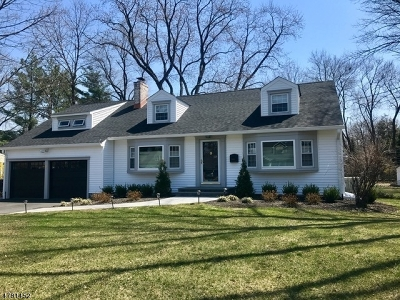 Morris Twp. Single Family Home For Sale: 9 Crescent Dr