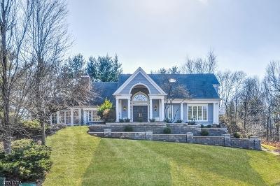 Morris Twp. Single Family Home For Sale: 41 Eagle Nest Rd