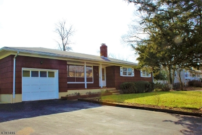Edison Twp. Single Family Home For Sale: 25 Mount Pleasant Ave
