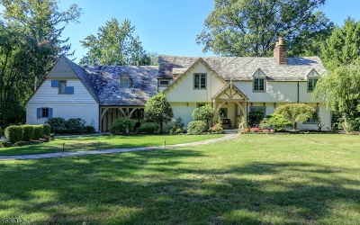 Westfield Town Single Family Home For Sale: 335 Woodland Ave